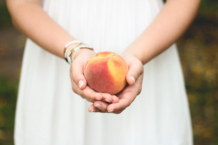 Recipes for Peach Month from Appliance City